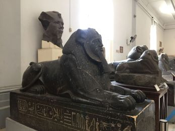 le-caire-musee-egyptien-statue