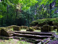 archeologie-jungle-palenque-mexique-larchivoyageuse